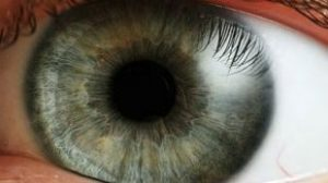 First patient receives potential new treatment for wet age-related macular degeneration in London Project to Cure Blindness