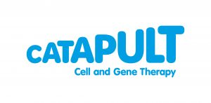 Cell and gene therapy catapult announces cell medica acquisition of WT1 T-cell therapy