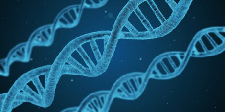 £438 million investment for UCL gene therapy spinouts